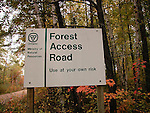 Forest Access Road Renfrew County Ontario Canada