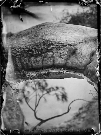 """A puddle on sandstone reflects tree branches in the Trois Pignons area of the Fontainebleau forest in France. Claude François Denecourt created 11 official trails during his life, with a combined length of 150 km. Later, his chosen successor, Charles Colinet continued his work and added new trails. The footpaths were abandoned and fell into disrepair during the two World Wars. After the wars, the old trails were eventually repaired and new paths added, including the """"Circuit des 25 Bosses"""" (The 25 Bump Loop), that passes through the Trois Pignons. The latter trail was built by mountaineers in the 1970's to train for hiking in the Alps."""