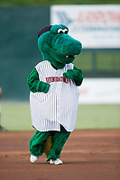 "Kannapolis Intimidators mascot ""Tim E. Gator"" runs the bases between innings of the game against the Greensboro Grasshoppers at Kannapolis Intimidators Stadium on August 13, 2017 in Kannapolis, North Carolina.  The Grasshoppers defeated the Intimidators 3-0.  (Brian Westerholt/Four Seam Images)"