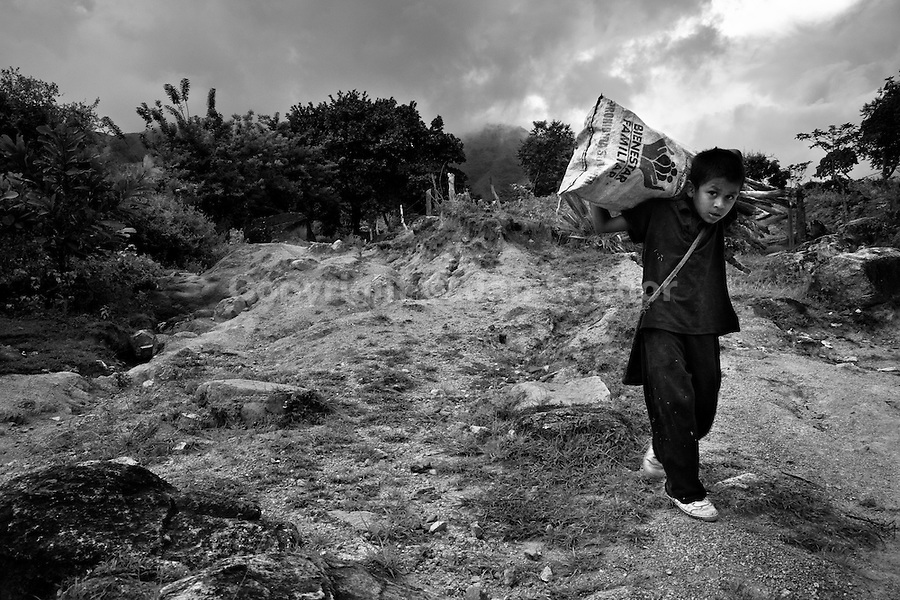 A displaced Indian boy (Kankuamo) carries firewood in the mountains of Sierra Nevada, Cesar dept., Colombia, 2 June 2010. With nearly fifty years of armed conflict, Colombia has the highest number of civil war refugees in the world. During the last ten years of the civil war more than 3 million people have been forced to abandon their lands and to leave their homes due to the violence. Internally displaced people (IDPs) come from remote rural areas, where most of the clashes between leftist guerrillas FARC-ELN, right-wing paramilitary groups and government forces takes place. Displaced persons flee in a hurry, carrying just personal belongings, and thus they inevitably end up in large slums of the big cities, with no hope for the future.