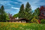Deutschland, Bayern, Chiemgau, Siegsdorf: Blumenwiese vor Almhaus | Germany, Bavaria, Chiemgau, Siegsdorf: flower meadow and alpine chalet