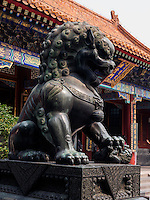Bronzelöwe im Sommerpalast, Yi He Yuan, in Peking, China, Asien, UNESCO-Weltkulturerbe<br /> Bronze lion in the summerpalace, Yi He Yuan,Beijing, China, Asia, world heritage