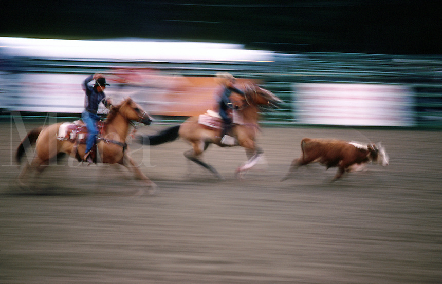 Blurred motion image of a calf-roping event at a rodeo.