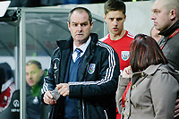 Sunday, 28 November 2012<br /> Pictured:Steve Clarke.<br /> Re: Barclays Premier League, Swansea City FC v West Bromwich Albion at the Liberty Stadium, south Wales.