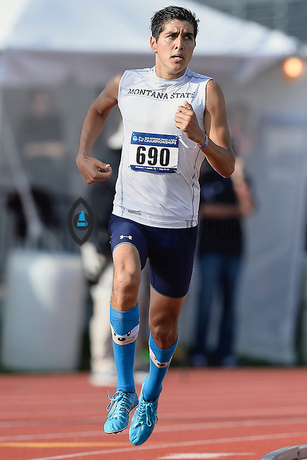 Cristian Soratos of Montana State competes in 1500 meter prelims during West Preliminary Track and Field Championships, Friday, May 29, 2015 in Austin, Tex. (Mo Khursheed/TFV Media via AP Images)