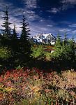 Mount Shuksan and fall foliage, North Cascades National Park, Washington