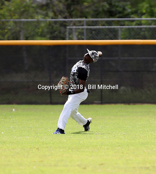 Jhonny Piron participates in an international showcase hosted by JDB Baseball at the Quality Baseball Academy on February 20, 2018 in Santo Domingo, Dominican Republic (Bill Mitchell)