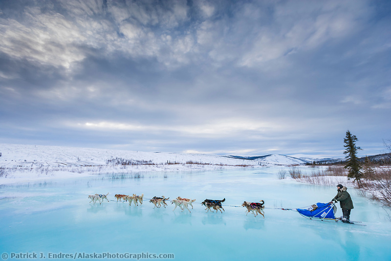 Musher Richie Beattie crosses overflow on Ptarmigan creek near mile 101 checkpoint during the 1000 mile Yukon Quest sled dog race 2006, between Fairbanks, Alaska and Whitehorse, Yukon. Dubbed the toughest dogsled race in the world.