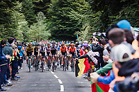 Grupetto up the Col de Marie Blanque<br /> <br /> Stage 9 from Pau to Laruns 153km<br /> 107th Tour de France 2020 (2.UWT)<br /> (the 'postponed edition' held in september)<br /> ©kramon