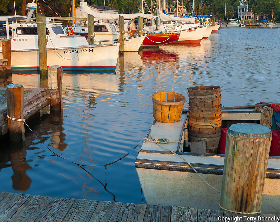 St. Michaels, Maryland<br /> Fishing boats and sail boats in the harbor in late evening light