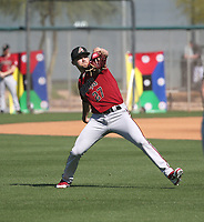 Conor Grammes - Arizona Diamondbacks 2020 spring training (Bill Mitchell)