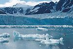 Alaska, Sea Kayaker in Kenai Fjords National Park. Aialik Bay, Pedersen Lagoon, David Fox,.