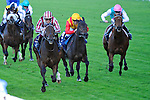 Cirrus des Aigles (no. 1), ridden by Christophe Soumillon and trained by C. Barande-Barbe, wins the group 1 Champion Stakes for three year olds and upward on October 15, 2011 at Ascot Racecourse in Ascot, New York.  (Bob Mayberger/Eclipse Sportswire)