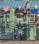 Caid Milligan, of Carson City, competes in the Mutton Bustin' portion of the Smackdown Tour Bull Riding event at Fuji Park in Carson City, Nev., on Saturday, June 7, 2014.<br /> Photo by Cathleen Allison