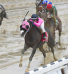 Appealing Tale (no. 1), ridden by Joseph Talamo and trained by Peter Miller, wins the 35th running of the grade 2 Kelso Handicap for three year olds and upward on October 03, 2015 at Belmont Park in Elmont, New York.  (Bob Mayberger/Eclipse Sportswire)