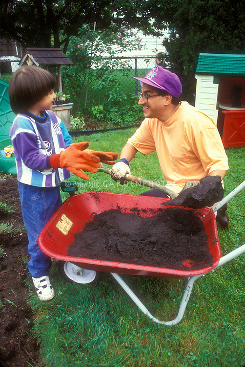 Fun time Dad and little boy son in the backyard with a red wheelbarrow, shovel, big orange gardening gloves on the child, father pretending to throw dirt, on lawn in garden