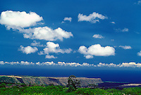 The cliffs at South Point on the Big Island of Hawaii.