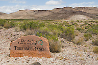 Torrance Ranch, Nature Conservancy property in Oasis Valley, near Beatty, Nevada.  Habitat of Amargosa toad, Bufo nelsoni