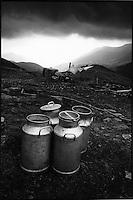 Europe/France/Auvergne/15/Cantal/Massif du Puy Mary : Bidons de lait aux environs du buron du Col de Rombière - Parc Naturel Régional des Volcans d'Auvergne