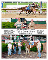 Tell a Great Story winning The Go for Wand Stakes at Delaware Park on 6/15/13
