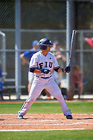 FIU Panthers catcher Luis Chavez (9) bats during a game against the South Dakota State Jackrabbits on February 23, 2019 at North Charlotte Regional Park in Port Charlotte, Florida.  South Dakota defeated FIU 4-3.  (Mike Janes/Four Seam Images)