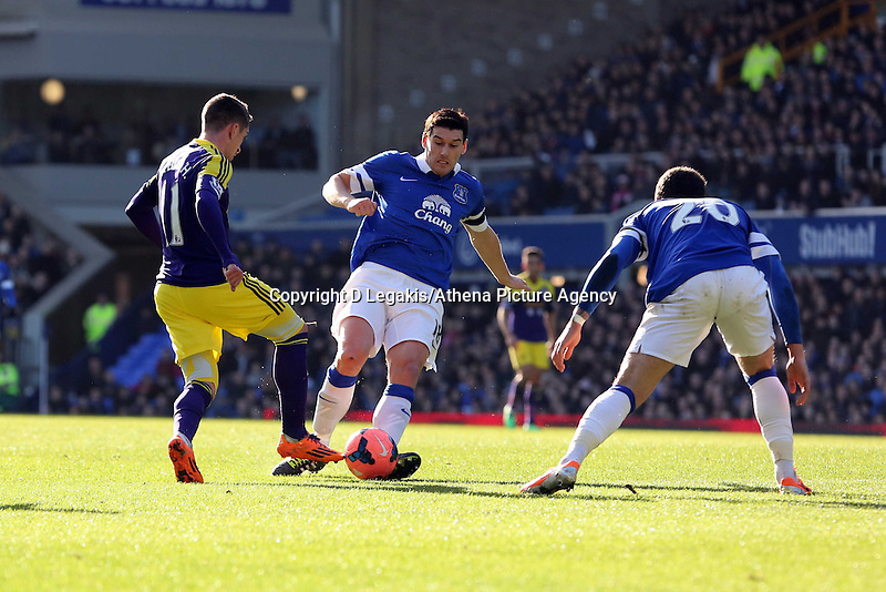 Pictured L-R: Palo Hernandez of Swansea against Gareth Barry and Ross Barkley of Everton. Sunday 16 February 2014<br /> Re: FA Cup, Everton v Swansea City FC at Goodison Park, Liverpool, UK.