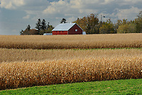 Farm along Highway 7<br />