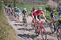 Bauke Mollema  (NED/Trek-Segafredo) up La Redoute<br /> <br /> 82nd Flèche Wallonne 2018 (1.UWT)<br /> 1 Day Race: Seraing - Huy (198km)