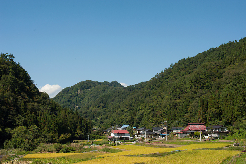 Houses and rice fields in the valley of the forested hills around Nobushina, Nagano Prefecture, Japan.