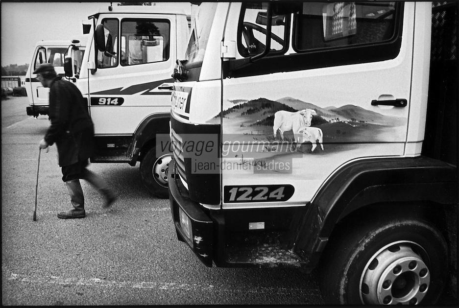 Europe/France/Bourgogne/Saône-et-Loire/St Christophe en Brionnais: Marché aux bovins charolais -  Les camions des éleveurs -  Aprés le marché on se dirige vers le bar
