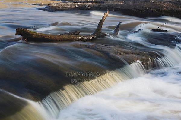 Log and small waterfall, Cape Fear River, Raven Rock State Park, Lillington, North Carolina, USA