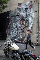 Europe/iFrance Ile de France /75011/Paris :  Le Mur Oberkampf, haut lieu du street art /Réalisation :  Bordalo II  -  L'artiste Bordalo II est portugais, il transforme des ordures et déchets pour former des animaux en 3 dimensions. Ses fresques murales sont uniques dans le style, et elles sont très troublantes à regarder. De loin, on a l'impression de voir une fresque plane. En se rapprochant ou en changeant d'angle de vue, on se rend compte du relief. <br /> // Europe / iFrance Ile de France / 75011 / Paris: The Oberkampf Wall, a high place of street art / Director: Bordalo II - The artist Bordalo II is Portuguese, he transforms garbage and waste to form 3-dimensional animals. Its murals are unique in style, and they are very disturbing to look at. From a distance, one has the impression of seeing a flat fresco. By approaching or changing the angle of view, we realize the relief.