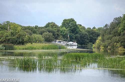 File image of boats on the Shannon Navigation