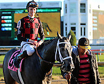 LOUISVILLE, KY - NOV 12: Petrov (#8 jockey Jack Gilligan) wins a maiden two year old race at Churchill Downs, Louisville, Kentucky. Owner Rialto Racing Stables LLC (Catherine Adams Hutt) and Southern Springs Stables (Ron Moquett.) Trainer Ron Moquett. By Flatter x Saracina (Bertrando) (Photo by Mary M. Meek/Eclipse Sportswire/Getty Images)