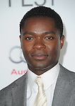 David Oyelowo at AFI FEST 2012 Closing Night Gala -Steven Spielberg's LINCOLN held at The Grauman's Chinese Theatre in Hollywood, California on November 08,2012                                                                               © 2012 Hollywood Press Agency