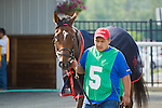 19 June 2010:  . Shared Account in the paddock before the All Along Stakes (III) at Colonial Downs in New Kent, Va. Shared Account is owned by Sagamore Farm, trained by H. Graham Motion and ridden by Edgar S. Prado