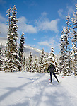 skate skier on trails near essex, montana on the southern border of glacier national park