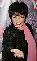 Liza MInelli 2009<br /> Photo By John Barrett/PHOTOlink