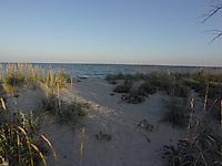 SEA_LOCATION_80393