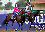 DEL MAR, CA - NOVEMBER 01: Proper Discretion, owned by Loooch Racing Stable and trained by Philip D'Amato, exercises in preparation for Breeders' Cup Filly & Mare Sprint at Del Mar Thoroughbred Club on November 1, 2017 in Del Mar, California. (Photo by Kazushi Ishida/Eclipse Sportswire/Breeders Cup)