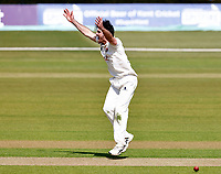 Grant Stewart appeals for Kent during Kent CCC vs Yorkshire CCC, LV Insurance County Championship Group 3 Cricket at The Spitfire Ground on 15th April 2021