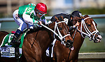HALLANDALE FL - FEBRUARY 27: Cathryn Sophia #5, ridden by Javier Castellano overtakes Dearest #2, ridden by Edgard J. Zayas en rout to wins the Fasig-Tipton Davona Dale Stakes at Gulfstream Park on February 27, 2016 in Hallandale, Florida.(Photo by Alex Evers/Eclipse Sportswire/Getty Images)