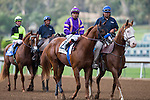 SEP 27,2014:Lord NElson,ridden by Martin Garcia,appears the track in FrontRunner Stakes at Santa Anita Park in Arcadia,CA. Kazushi Ishida/ESW/CSM