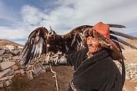 Asia Mongolia, Altai mountain,Bugat Soum, the hunter ,Bazarbai with his 2 years old eagle Ternik