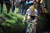 Maarten Wynants (BEL/LottoNL-Jumbo) up the Koppenberg<br /> <br /> 100th Ronde van Vlaanderen 2016