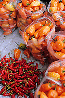 Iles Bahamas / New Providence et Paradise Island / Nassau : détail d'un étal au Marché de Potter's Cay sous le pont de Paradise Island - Piments rouges //  Bahamas / New Providence and Paradise Island / Nassau: Detail of a stall at Potter's Cay Market under the Paradise Island Bridge - Red Peppers