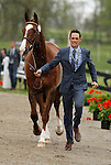 LEXINGTON, KY - APRIL 27: #41 Clifton Signature and rider Jonathan Paget  jog before the vets and grand jury during the first horse inspection for the Rolex Three Day Event on Wednesday April 27, 2016 in Lexington, Kentucky. (Photo by Candice Chavez/Eclipse Sportswire/Getty Images)
