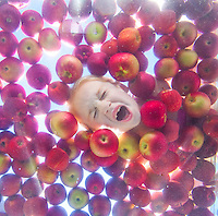 Young Child with open mouth bobbing for apples