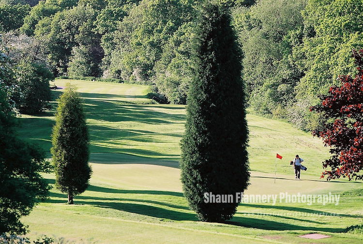 Pix: Shaun Flannery/shaunflanneryphotography.com...COPYRIGHT PICTURE>>SHAUN FLANNERY>01302-570814>>07778315553>>..18th May 2004..............Hickleton Golf Club, Lidgett Lane, Hickleton, Doncaster, DN5 7BE..Golf Course - 17th hole.