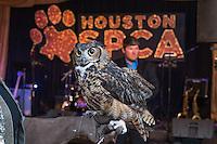 2016-04-15 Houston SPCA Animals' Best Friends Gala